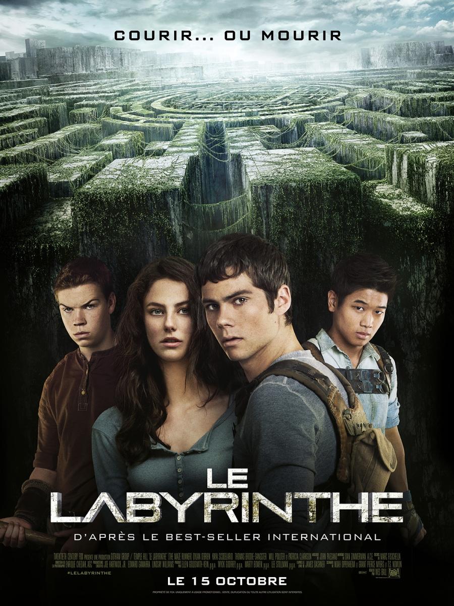 Le Labyrinthe : Mystérieux, captivant mais un peu frustrant