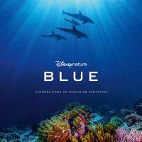 [VIDÉO] Blue : Découvrez la bande-annonce du nouveau film Disneynature