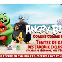 [CONCOURS] Angry Birds - Copains Comme Cochons : Des cadeaux exclusifs du film à gagner