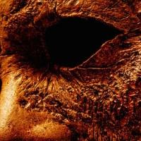 [CRITIQUE] Halloween Kills, de David Gordon Green